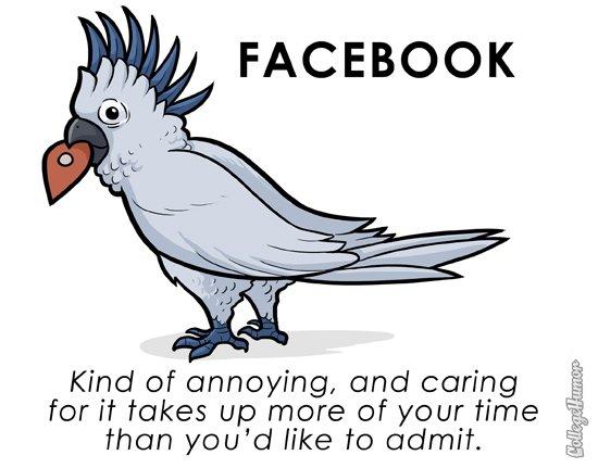 parodie facebook
