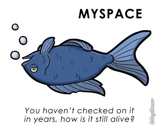 parodie myspace