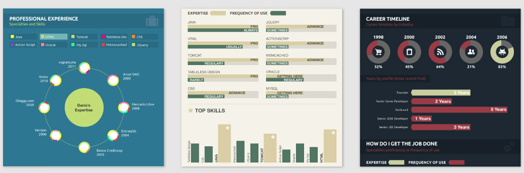 un cv en infographie avec cvgram