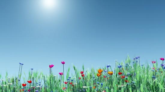 Fonds d 39 cran la s lection printemps 2013 blog du - Printemps place d italie horaires ...