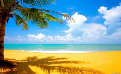 Fonds d'écran  sélection Nature paysages paradisiaques