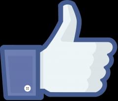 Comment Changer Le Nom D Une Page Facebook De Plus De 200 Fans Bdm