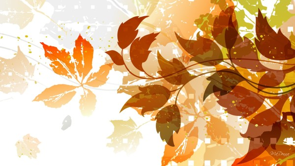 Fall-Leaf-Wallpaper-Collections
