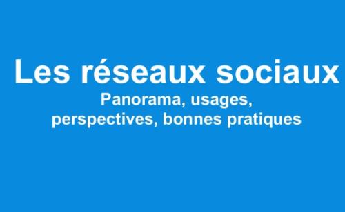 réseaux sociaux 2013   panorama  usages  perspectives