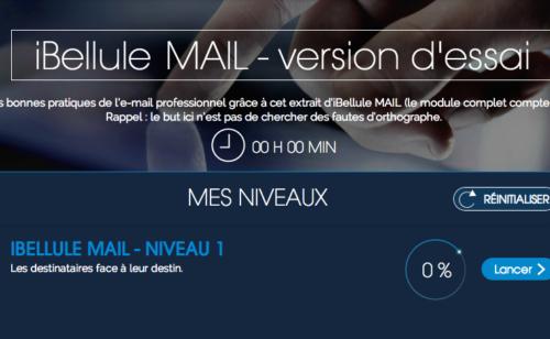 Maîtriser bonnes pratiques l'email professionnel iBellule Mail