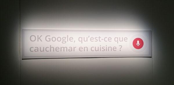 google-vocal