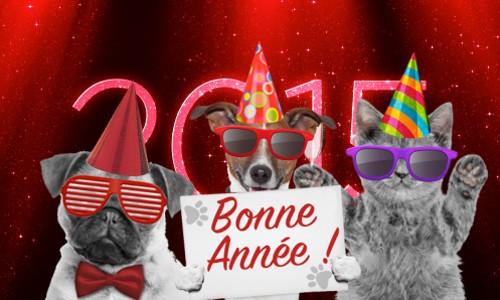 3 Outils Gratuits Pour Creer Une Carte De Vœux 2015 Bdm