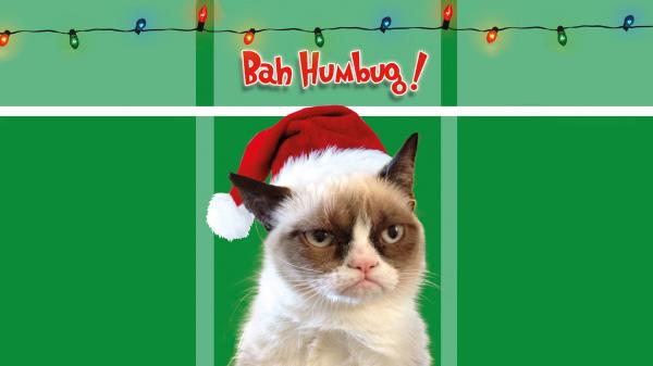 grumpy-cat-noel
