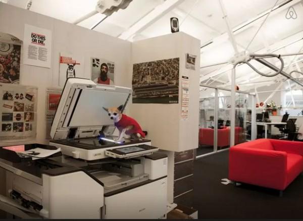 havas amsterdam recrute ses stagiaires avec une annonce airbnb blog du mod rateur. Black Bedroom Furniture Sets. Home Design Ideas