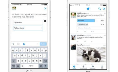 Officiel   sondages Twitter déployés tous comptes