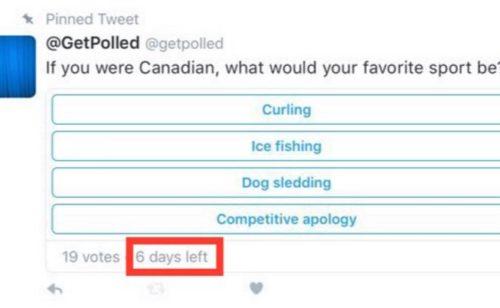 Twitter   bientôt vrai outil sondage