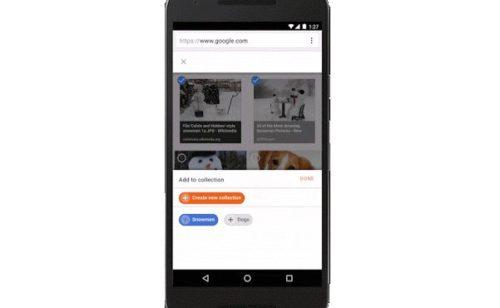 Google Images permet sauvegarder classer photos