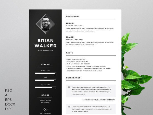 awesome looking resumes