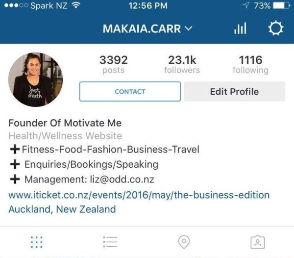 instagram-analytics-profil