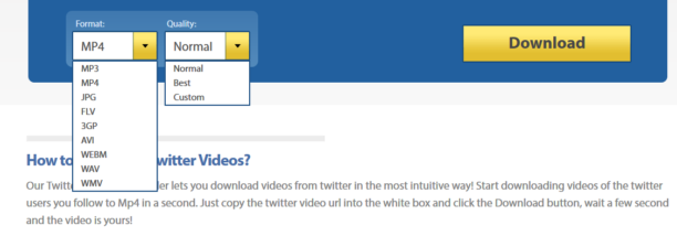 DownloadTwitterVideo-formats