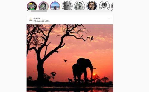 extension Chrome lire stories Instagram navigateur