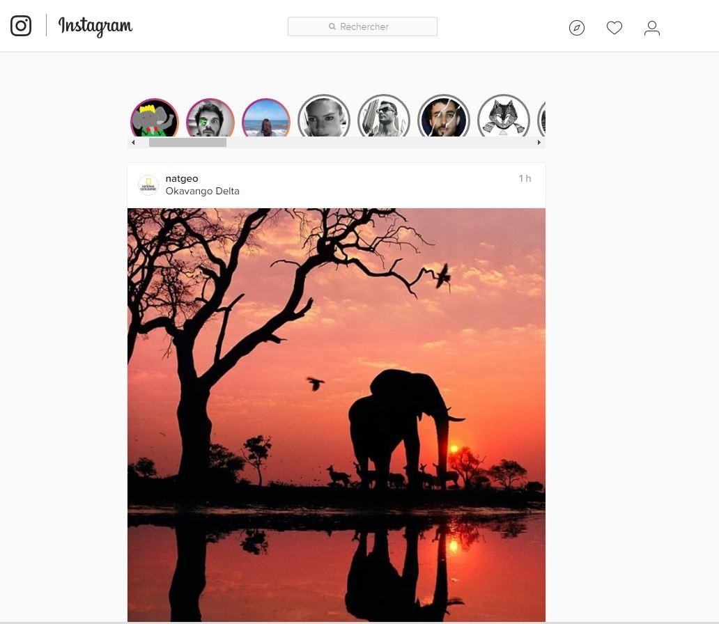 Photo Page: Une Extension Chrome Pour Lire Les Stories Instagram Sur