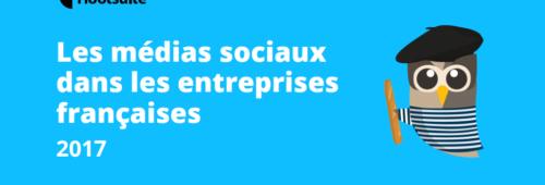 L'usage réseaux sociaux entreprises françaises 2017