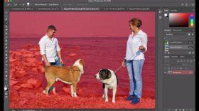 Mise à jour Photoshop : vous pouvez (enfin) détourer vos photos en quelques clics