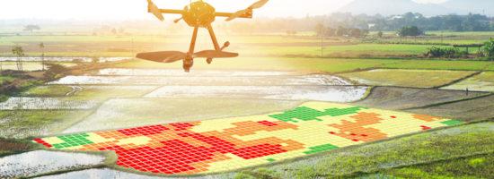 Développer des logiciels pour les agriculteurs, « c'est répondre à des besoins concrets grâce aux technologies de pointe »