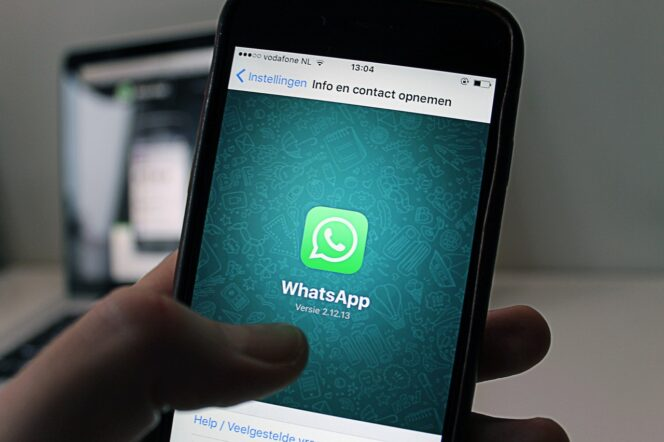 WhatsApp : clap de fin pour d'anciennes versions d'Android, iOS et Windows Phone