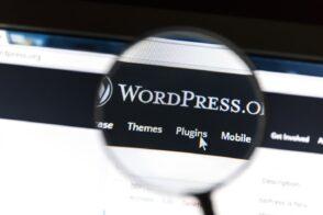 Parts de marché des CMS en 2021 : WordPress accentue sa domination