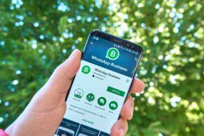 WhatsApp Business : créer des publicités sans quitter l'application, c'est pour bientôt
