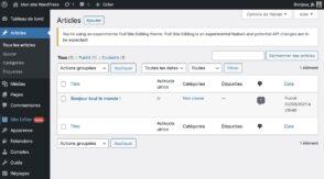 WordPress : tout savoir sur Full Site Editing, la prochaine évolution majeure du CMS