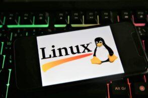 Linux fête ses 30 ans